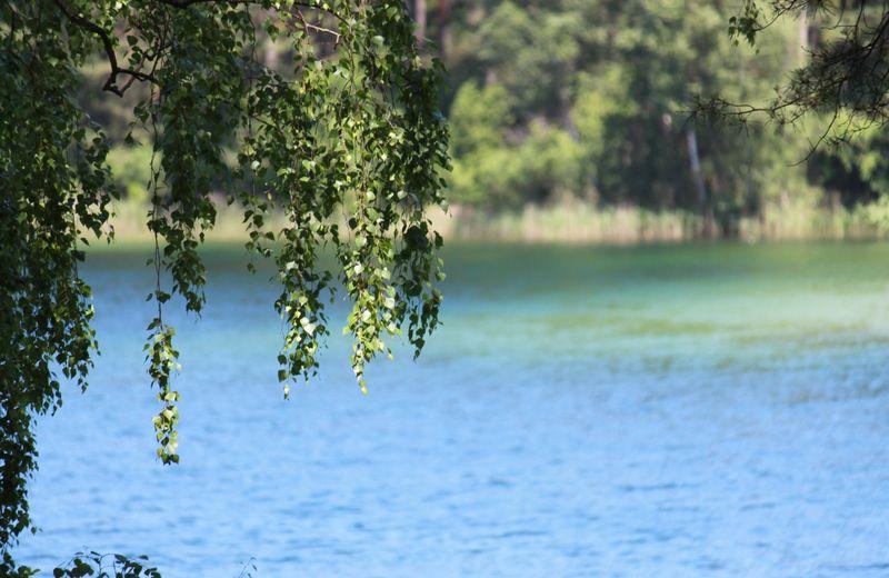 Nad Jeziorem Grochowskim powstanie miejsce rekreacji.  To wspólna inicjatywa gmin Chojnice i Kęsowo