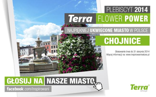 Rozpoczęło się głosowanie na Najpiękniej Ukwiecone Miasto w Polsce. Głosuj na Chojnice!