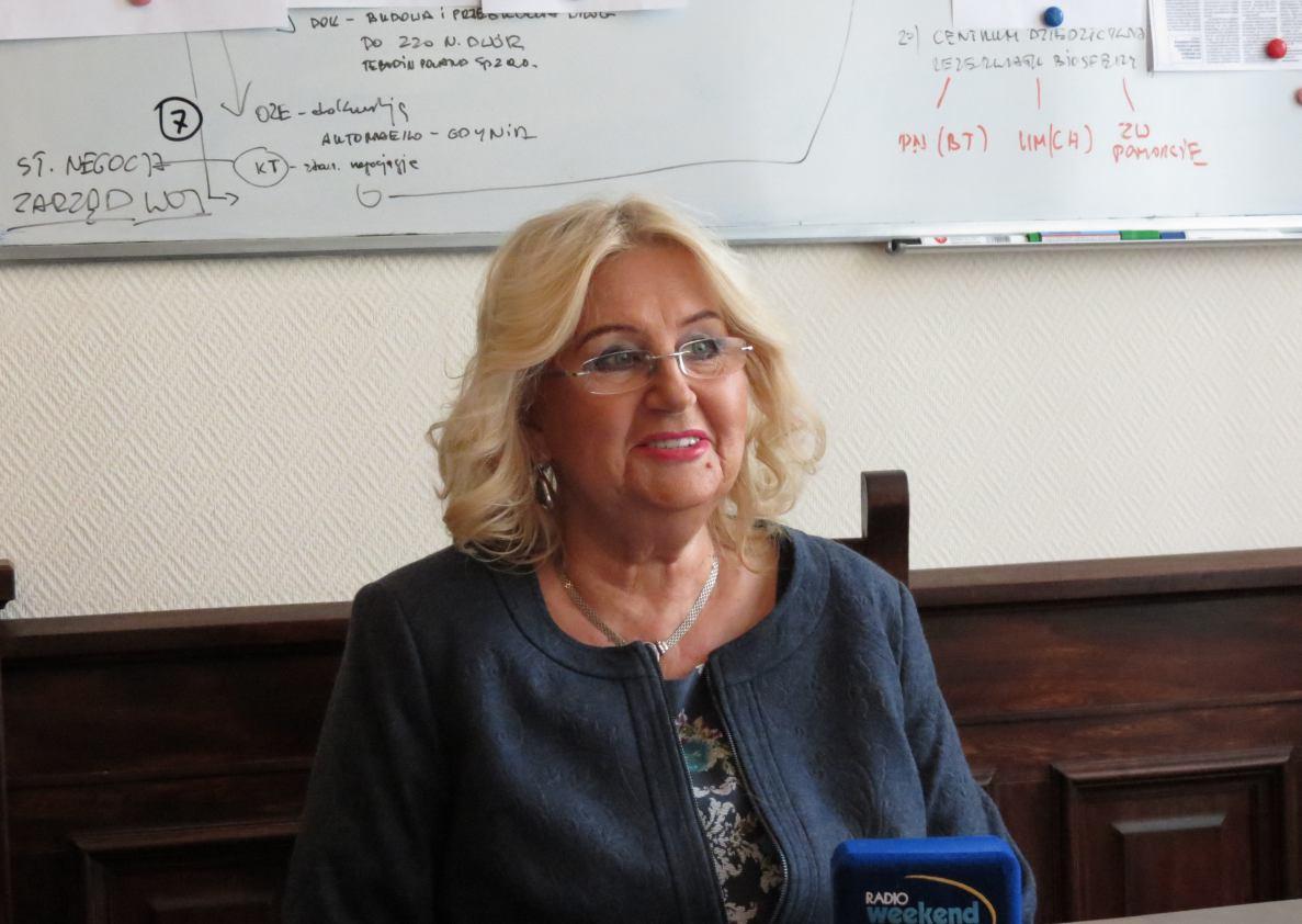 Sprawozdanie z pracy Pełnomocnika Burmistrza ds. Kobiet i Równości