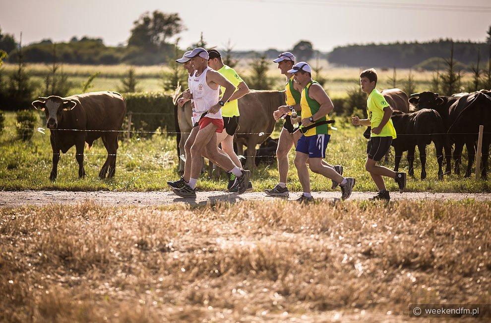 W piątek 365 maraton. W sobotę Ryszard Kałaczyński biegnie 366 FOTO