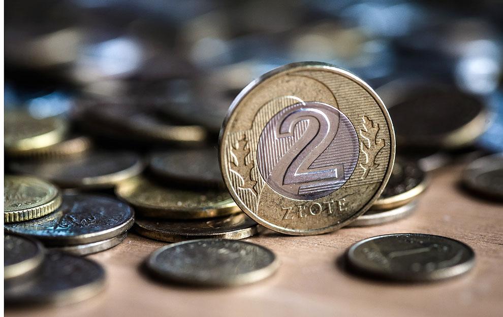 Stowarzyszenie na Rzecz Lokalnej Przedsiębiorczości z Chojnic zaprasza do internetowych licytacji na rzecz chorej Oliwki Stanki