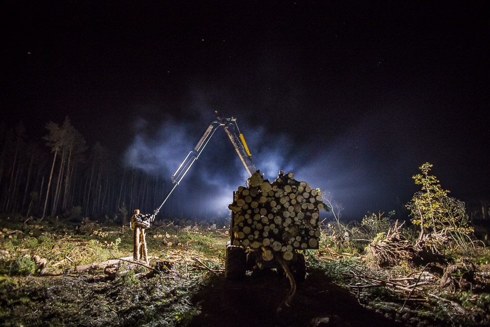 Trwa sprzątanie lasów po nawałnicy. Maszyny pracują nawet w nocy (FOTO)
