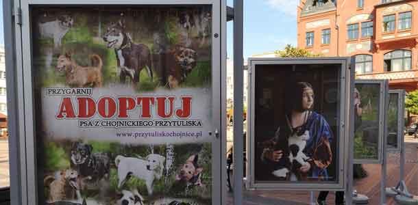 Plenerowa wystawa fotograficzna &bdquoAdopcja z Kulturą&rdquo