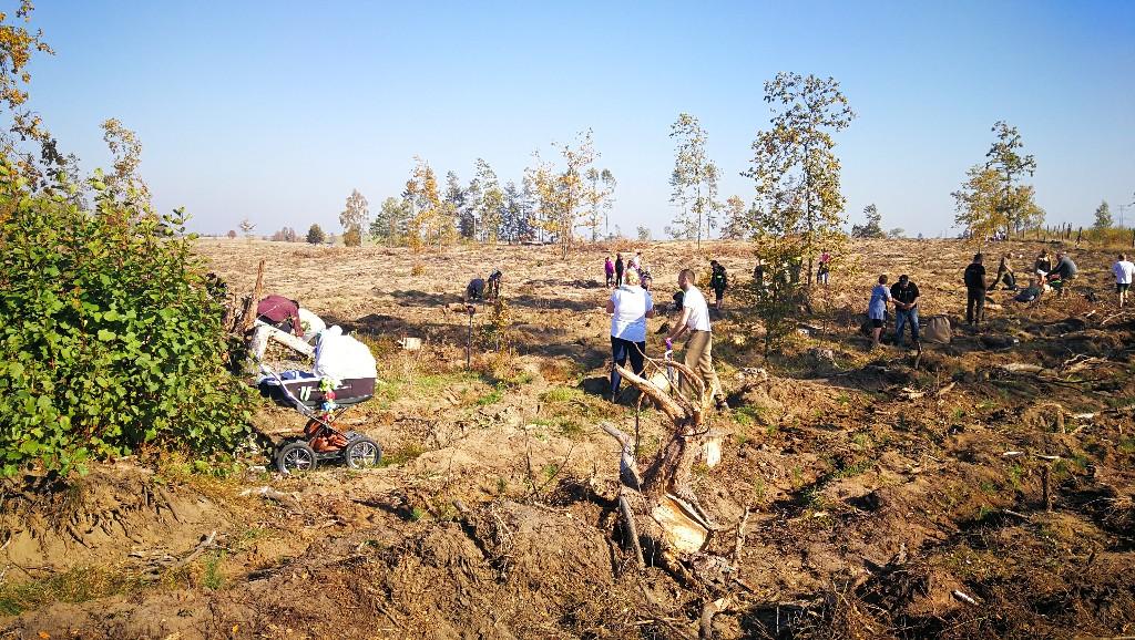 Mieszkańcy okolic Bytowa sadzili las na terenach ponawałnicowych w okolicach Półczna FOTO
