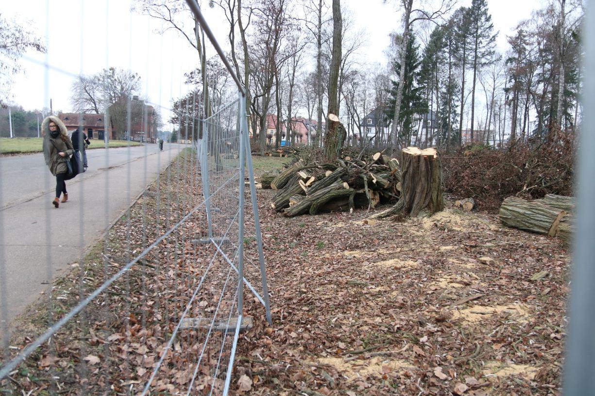 W Czarnem ruszyła modernizacja parku w ramach projektu Zmieniamy Czarne na Zielone