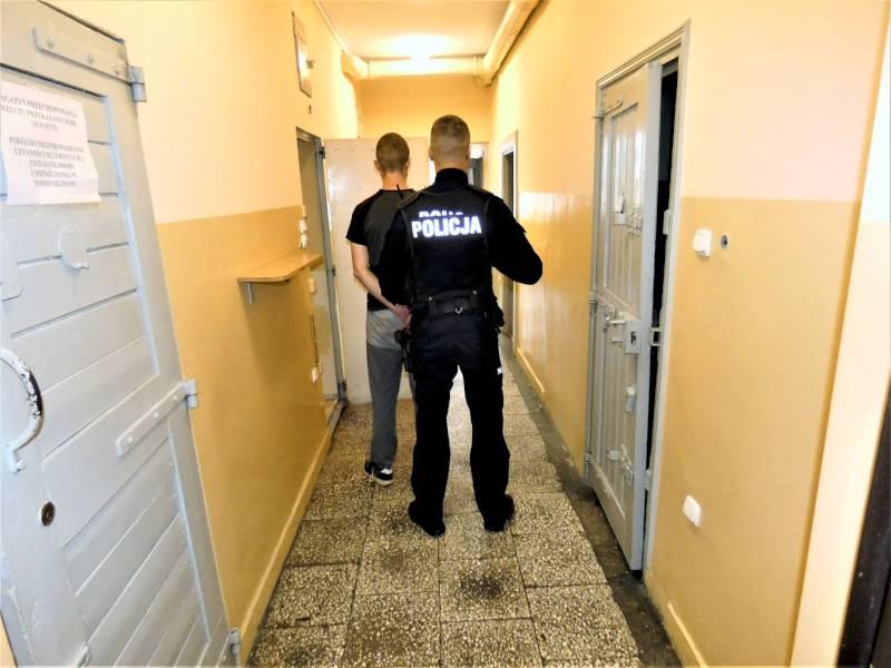 30-latek z gminy Kościerzyna hodował marihuanę w przydomowej szklarni