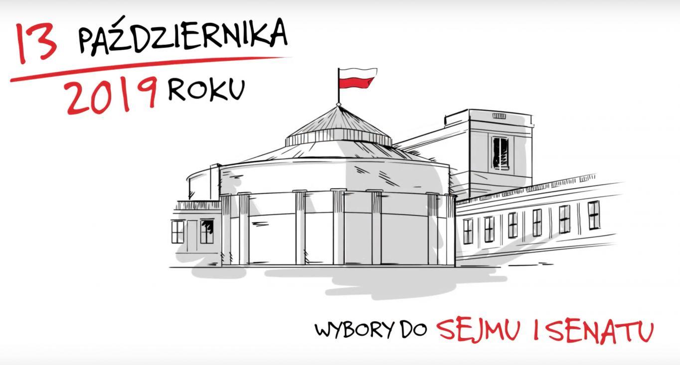 Jak prawidłowo oddać głos w wyborach do Sejmu i Senatu?
