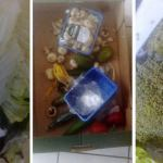 Gmina Debrzno:  | Spleśniałe, zgniłe i przeterminowane produkty żywnościowe w paczce dla rodziny w kwarantannie (FOTO)