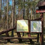 Powiat chojnicki:  | Park Narodowy Bory Tucholskie zamknięty dla odwiedzających