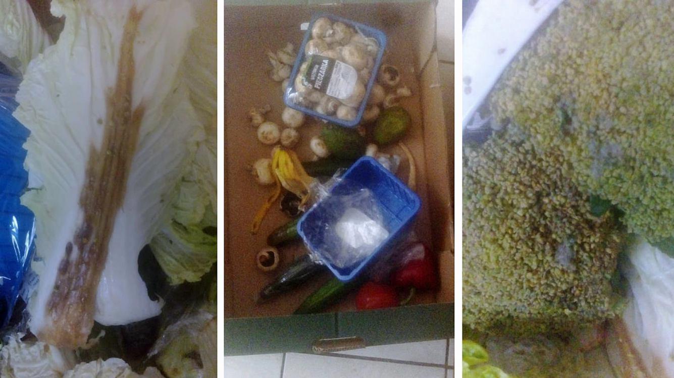 Spleśniałe, zgniłe i przeterminowane produkty żywnościowe w paczce dla rodziny w kwarantannie FOTO