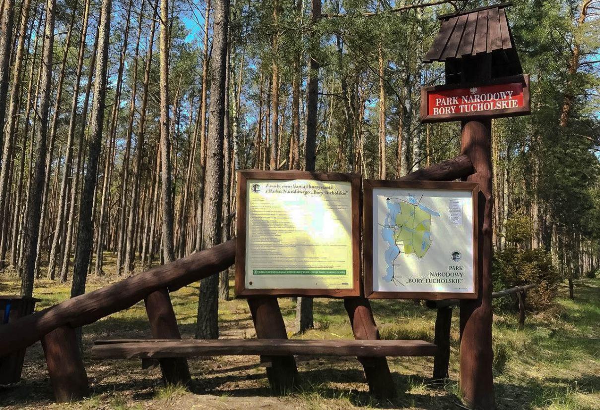 Park Narodowy Bory Tucholskie zamknięty dla odwiedzających