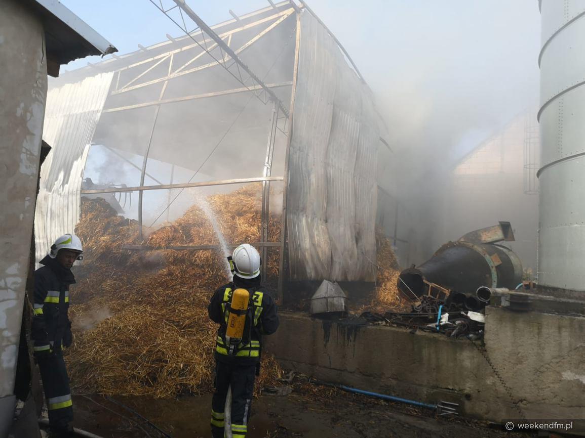 Groźnie wyglądający pożar na fermie drobiu w Wielowiczku, w gminie Sośno
