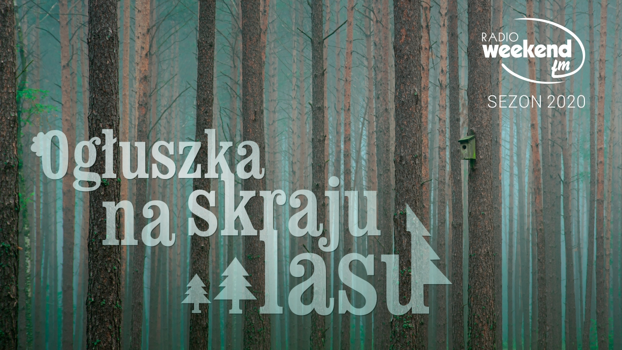 Ogłuszka na skraju lasu. Posłuchaj odcinków sezonu 2020