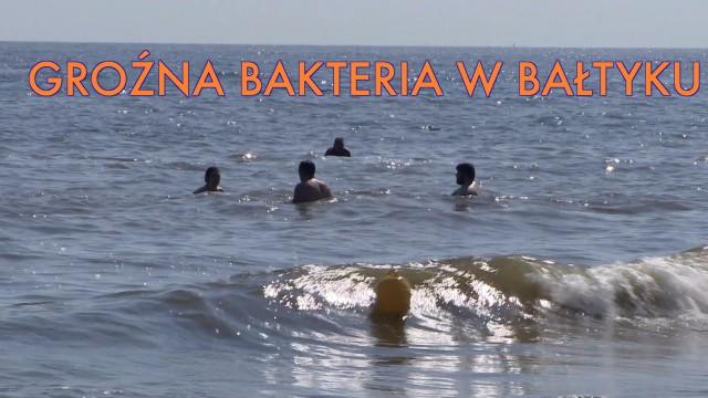 Pływanie w Bałtyku niebezpieczne. Pojawiła się groźna, mięsożerna bakteria