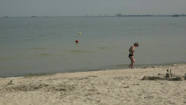 Sinice znów nad Bałtykiem. Zakaz kąpieli na plażach w Trójmieście