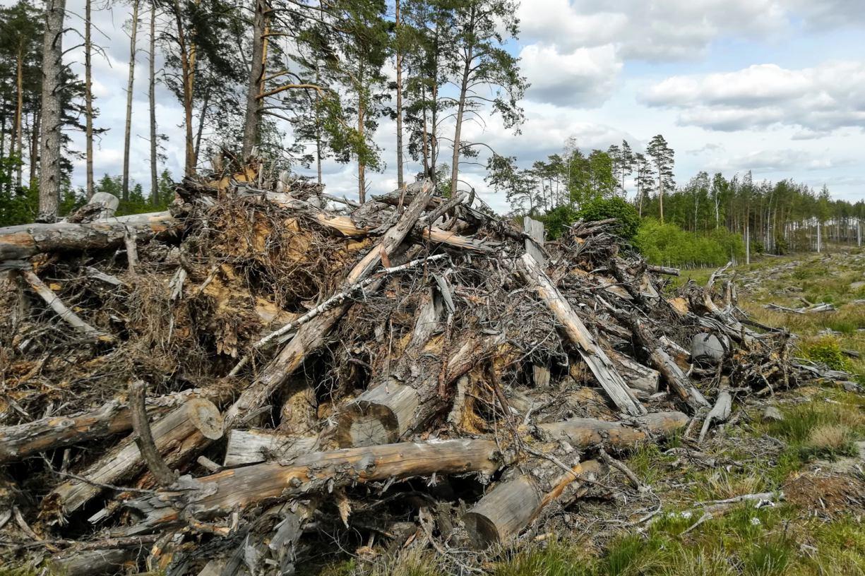 Kolejne środki trafiły do poszkodowanych w nawałnicy z 2017 roku gmin w powiecie bytowskim