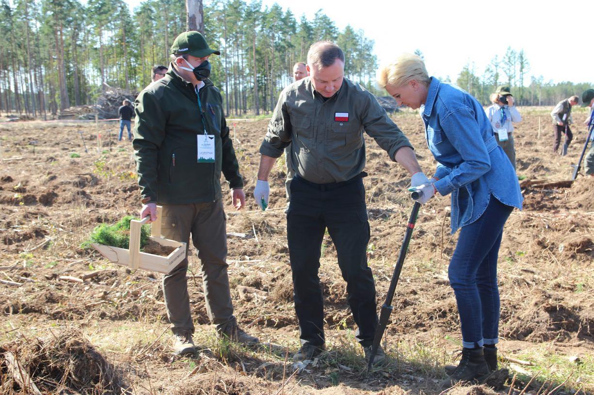 Para Prezydencka wzięła udział w odnawianiu lasu na terenie leśnictwa Zdroje w Nadleśnictwie Lipusz