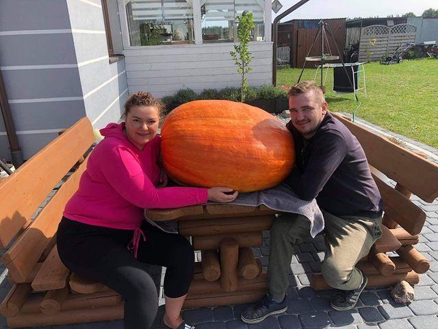 Ma prawie 2 metry obwodu i waży ponad 58 kilogramów. Gigantyczna dynia urosła na polu w Brusach Wybudowaniu