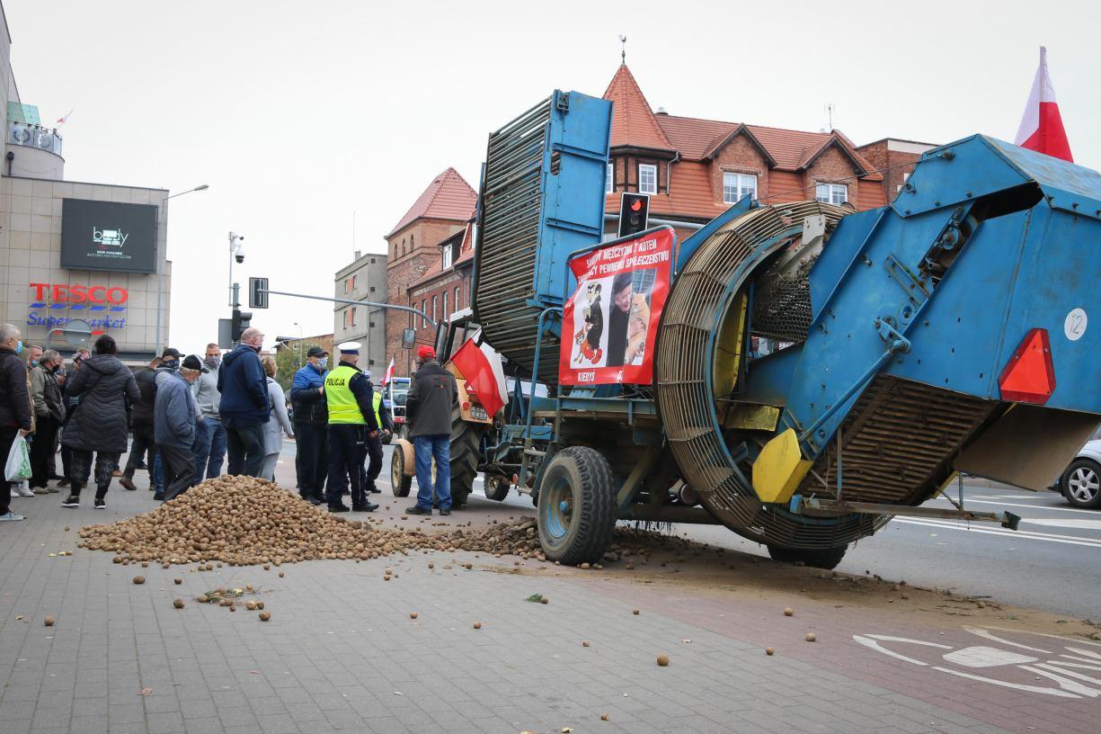 Ziemniaki przed biurem posła Mrówczyńskiego w Chojnicach. Rolnicy z regionu protestowali przeciwko Piątce Kaczyńskiego