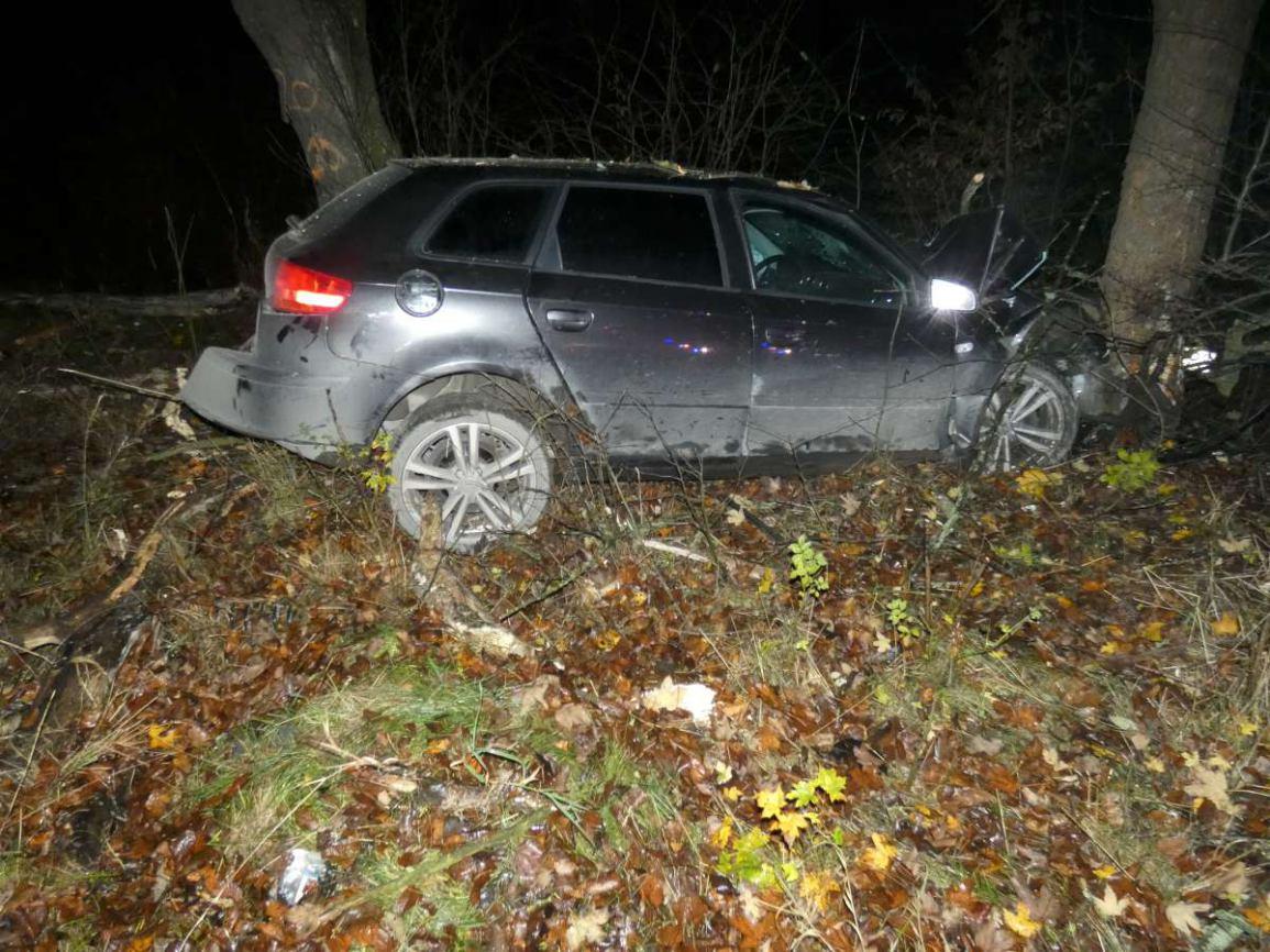 Audi, którym kierował 20-latek, uderzyło w drzewo. Wypadek na drodze nr 214