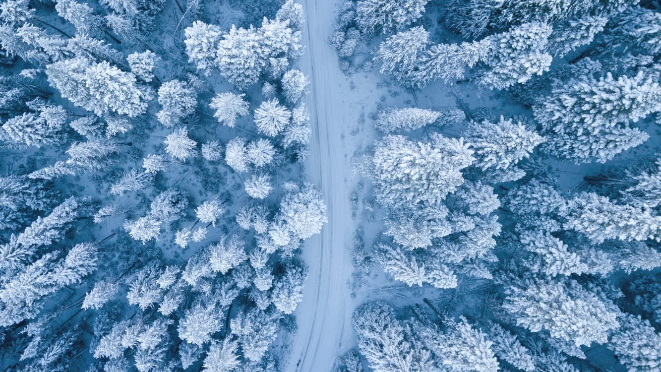 Rajd nordic walking wokół jeziora Witoczno. W niedzielę zapraszają Stowarzyszenie Charzy i Zaborski Park Krajobrazowy ROZMOWA