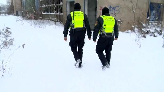 Akcja Zimowy Ratownik. Policjanci i strażnicy miejscy szukają bezdomnych w pustostanach, by udzielić im pomocy
