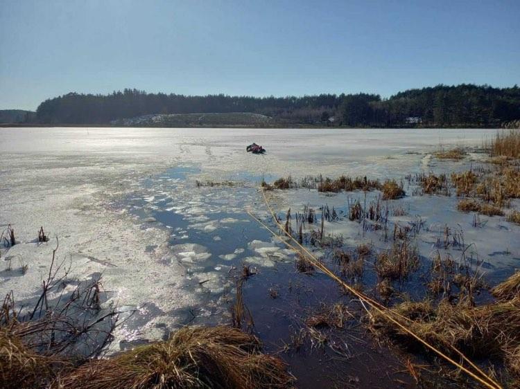 Nietypowa akcja ratunkowa kościerskich strażaków. Wyciągnęli z jeziora wilka, pod którym załamał się lód FOTO