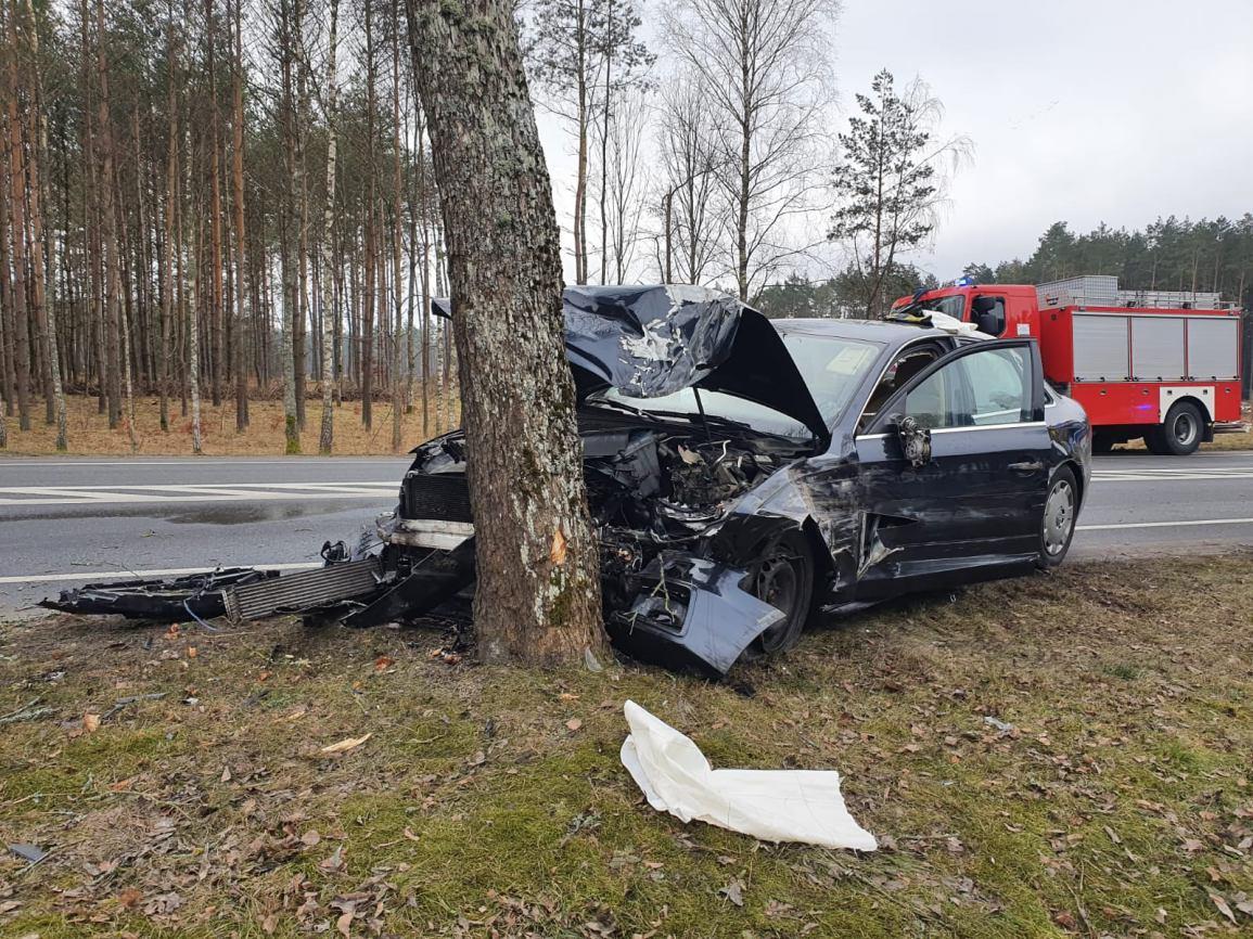 Wypadek na drodze krajowej nr 22 w Gutowcu. Kierowca samochodu osobowego uderzył w drzewo