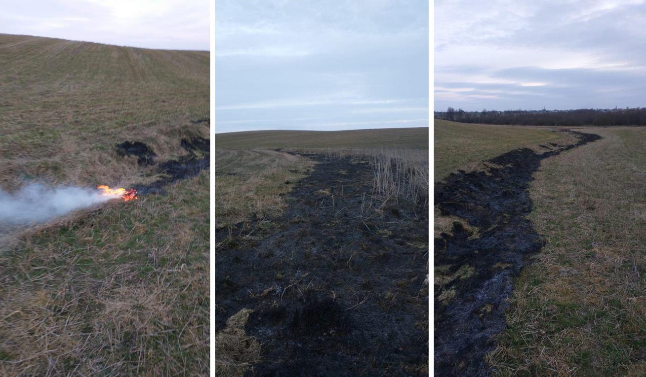 Wypalanie traw ma katastrofalne skutki dla przyrody i jest poważnym zagrożeniem pożarowym ROZMOWA