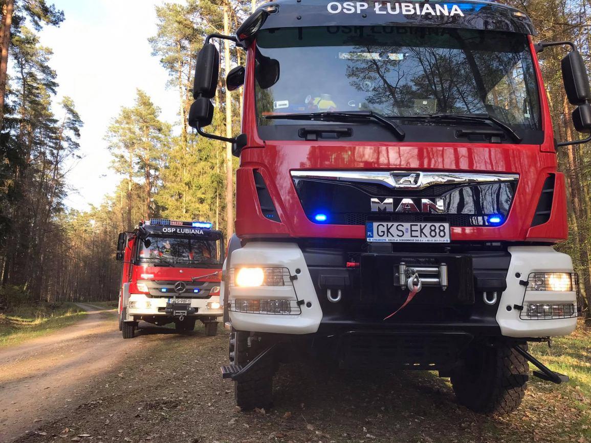 Sześć zastępów straży pożarnej oraz dromader gasiły pożar lasu w pobliżu miejscowości Loryniec, w gm. Kościerzyna