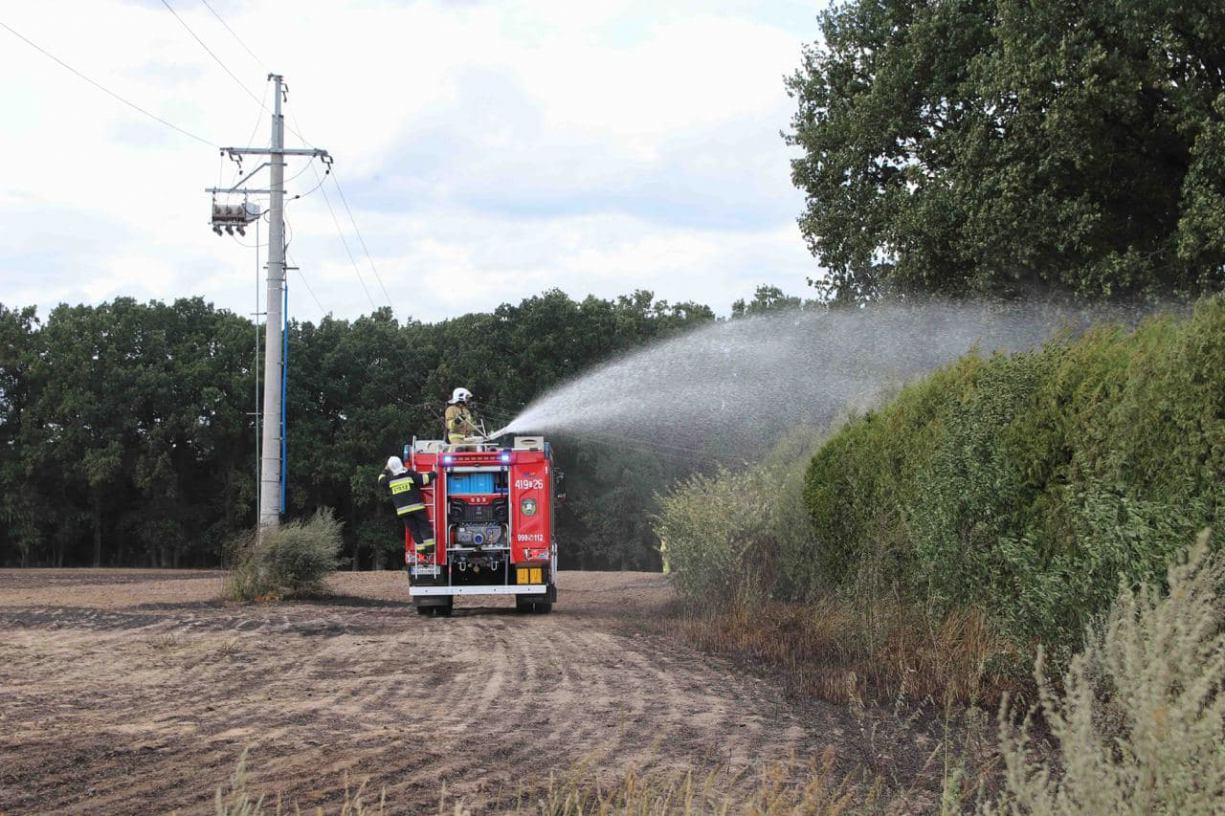 Jedna osoba została poszkodowana w pożarze zboża, do którego doszło w Zamartem w gminie Kamień Krajeński FOTO