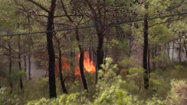 Pożary pustoszą południową Turcję. Krajobraz jak po końcu świata
