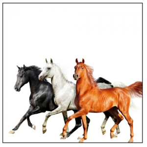 OLD TOWN ROAD (DIPLO REMIX) - (LIL NAS X, BILLY RAY CYRUS)