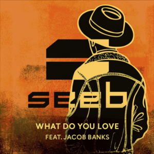 WHAT DO YOU LOVE - (SEEB FEAT. JACKOB BANKS)