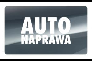 Logo AUTO NAPRAWA $ Łukasz Czapiewski, SKRZYNIE BIEGÓW