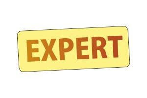 """Logo Biuro usług przeciwpożarowych """"EXPERT"""""""